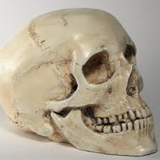Человеческий череп вместо мяча