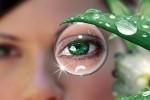 Мое решение - контактные линзы