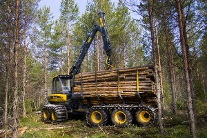 Методы и средства лесозаготовки на российском рынке